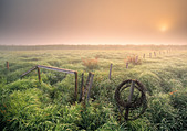 Sunrise over field near Rollyview, Alberta, Canada. - Stock Image - CFAB9D