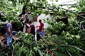 May 01, 2010  (from Left) Laverne Clemmer (cq), Thomas Little (cq), and Johnny McElwain (cq) inspect and retrieve valubles from Milton Wilbanks' (cq) trailer located on Robertson Road in Ripley, MS.  The 92 year old resident left just moments before the tree fell to a safe location.   (photo by Stan - Stock Image - CCYJTF