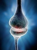 Synapse, artwork - Stock Image - D1P5T8