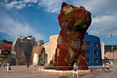 Puppy, the dog topiary sculpture by Jeff Koons outside the Guggenheim Museum Bilbao. - Stock Image - DDAG52