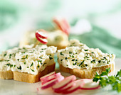 Cheese and radish open sandwiches - Stock Image - C89FMH