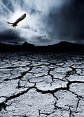 A bird flies over a desolate landscape - Stock Image - CYH5T9