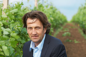 Christophe Dussutour, manager, winemaker chateau trottevieille saint emilion bordeaux france - Stock Image - BEAW2K