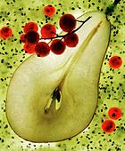 pear,pear half - Stock Image - CWHMJE