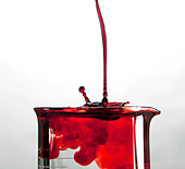 A close up of a glass medical beaker with red colored fluids pouring in - Stock Image - CMN7DM