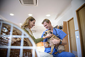 Veterinarian petting dog in lobby - Stock Image - D14KK4