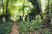 Abney Park Cemetery in Stoke Newington London England - Stock Image - AJKDEY