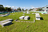 Yarborough Cemetery in Belize City, Belize - Stock Image - C5JE2F