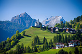 Italy Alps Veneto Dolomites Cadore hill wood forest meadows holidays travel, - Stock Image - BNM8YN