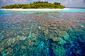 Coral plates, lagoon and tropical island, Maldives, Indian Ocean, Asia - Stock Image - CPDHC6