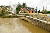 Burrowbridge, UK. 13th November, 2014. UK Weather: Flooding with very high water levels rising under the main Road Bridge. © Robert Timoney/Alamy Live News - Stock Image - EAEJ5G