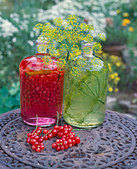 Redcurrant liqueur & herb oil with dill on table in open air - Stock Image - B46J82