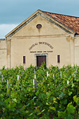 chateau trottevieille saint emilion bordeaux france - Stock Image - BEAW10