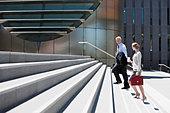 Business people walking up steps - Stock Image - BM6DHN