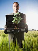 businessman holding a briefcase with a tree in it - Stock Image - BJG9W7