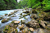 River in Caucasus mountains, near lake Ritsa, Abkhazia, Georgia - Stock Image - EFN9ET