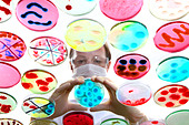 Laboratory, biological, chemical. Analysis of bacterial cultures of bacteria growing in petri dishes. - Stock Image - CNF31H