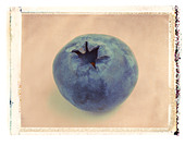 blueberry close up polaroid transfer - Stock Image - A76706