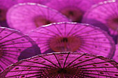 Umbrellas, Chiang Mai, Chiang Mai Province, Northern Thailand, Thailand - Stock Image - C4TERB