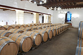 barrel aging cellar chateau trottevieille saint emilion bordeaux france - Stock Image - BEAW3P