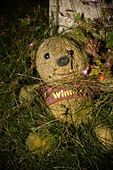 rotting stuffed toy in a children's graveyard - Stock Image - C6J4PW