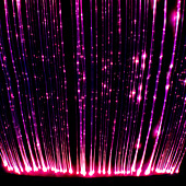 This photograph taken in a light sensory room designed to relax and entertain children and adults with learning difficulties and - Stock Image - C1WF9E