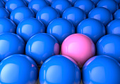 Close up of many blue spheres with one pink one - odd one out / difference / male/female inequality concept - Stock Image - D2FPRY