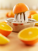Oranges and juicer - Stock Image - CRBK8D