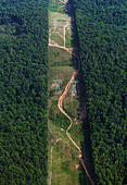 aerial photograph swath through forest for electrical powerlines Alabama - Stock Image - CNX0DE