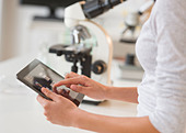 USA, New Jersey, Jersey City, Student (14-15) using tablet pc in chemistry lab - Stock Image - CTEM0R