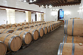 barrel aging cellar chateau trottevieille saint emilion bordeaux france - Stock Image - BEAW3Y
