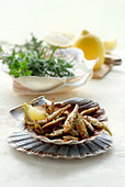Crispy fried anchovies - Stock Image - BJK5T2
