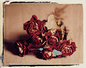 dried bunch of red roses. polaroid transfer. ©mak - Stock Image - D1CGB8