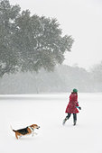 Caucasian woman walking in snow storm with dog - Stock Image - BK1RCH