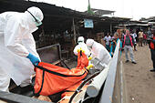 Monrovia. 14th Oct, 2014. Health workers load a body infected with Ebola virus onto a pickup truck in Monrovia, capital of Liberia on Oct. 14, 2014. © Marcus DiPaola/Xinhua/Alamy Live News - Stock Image - E8TWWR