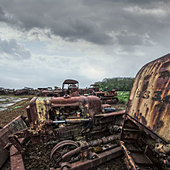 rusting tractors - Stock Image - D8FPWF