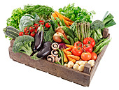 BOX OF FRESH VEGETABLES - Stock Image - BF87T7