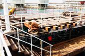 Pier repairs, Limassol harbour. - Stock Image - E9YYRT
