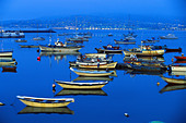 Fishing boats in the harbour at night, Ria de Baiona, Pontevedra, Galicia, Spain - Stock Image - AX9NG8