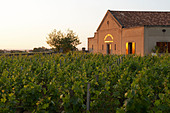 the winery at sunset chateau trottevieille saint emilion bordeaux france - Stock Image - BEAW5A