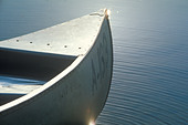 Detail of front of canoe on water Delaware River Calicoon NY - Stock Image - AM1CG9