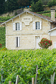 chateau pavie saint emilion bordeaux france - Stock Image - BEATY9