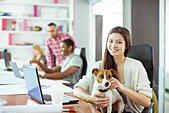 Woman petting dog in office - Stock Image - E59B65