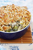 Chicken, Broccoli and Ziti Casserole - Stock Image - BJMBKC