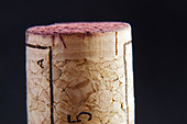 technical cork with disks at the end and glued agglomerate cork in the middle - Stock Image - BEAW6J