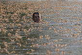 Tiszakurt, Hungary. 18th June, 2015. A boy swims among the Long-tailed mayflies on the river Tisza in Tiszakurt, a village in central Hungary, on June 18, 2015. The short-lived mayflies engage in a frantic rush to mate before they perish in just a few hours from late spring to early summer every year. Larva of the species live in small holes in the river banks for three years before they develop into the final form of the insect to participate in the swarming, then die. © Attila Volgyi/Xinhua/Alamy Live News - Stock Image - EW7305
