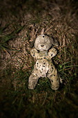 rotting stuffed toy in a children's graveyard - Stock Image - C6J4XX