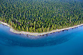 An aerial view of a heavily forested section of the Lake Tahoe shoreline in the summer, CA. - Stock Image - C32TKW