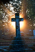 Cross headstones lit up in the early morning sunlight through mist. England - Stock Image - C6P9HK