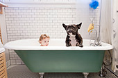 Girl sitting with bulldog in bathtub - Stock Image - D4KX8R
